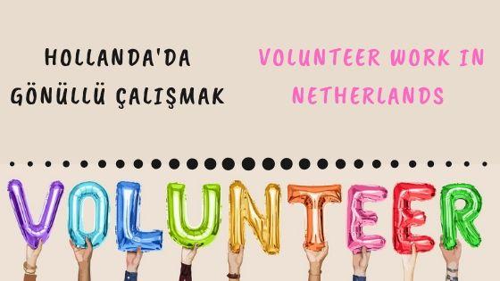 Hollanda'da Gönüllü Çalışmak